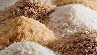 Rice (rice)