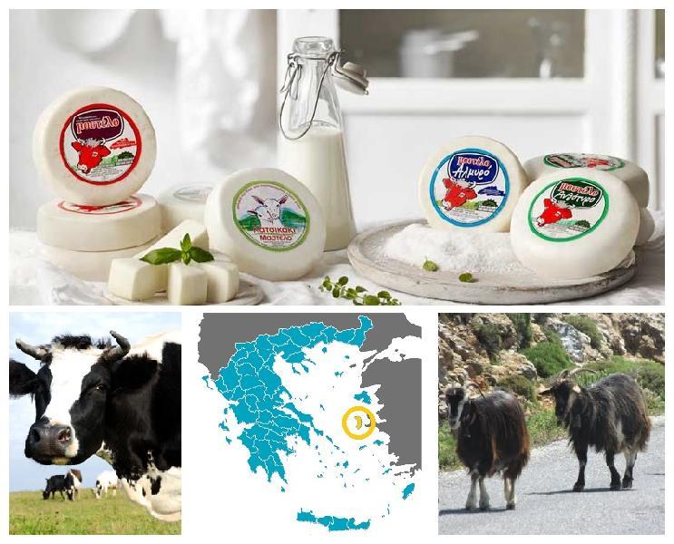 Greek Chios Island Cheese