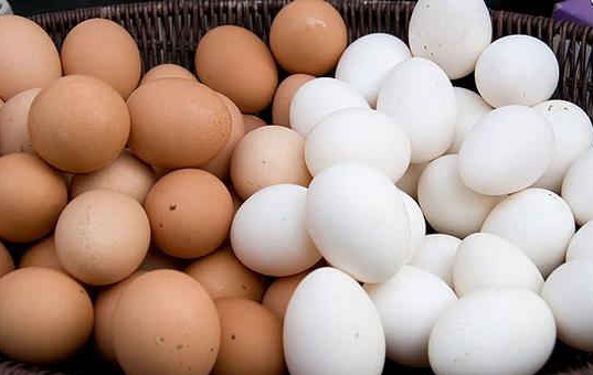 Fresh Egg Manufacturer in Madurai Tamil Nadu India by MSS