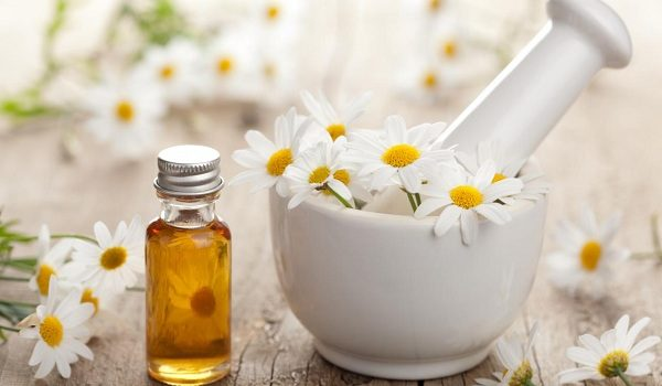 Image result for chamomile oil