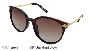 YS5829P Ladies Sunglasses (YS5829P)