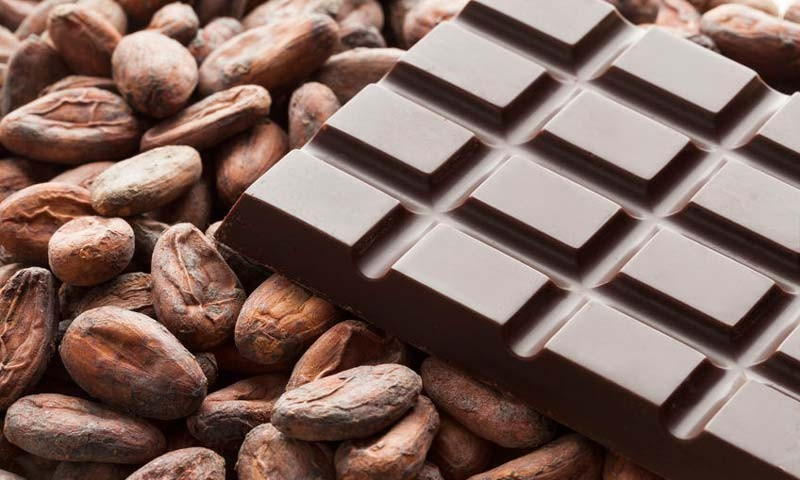 Cocoa Beans Manufacturer in Bangalore Karnataka India by Vanilla