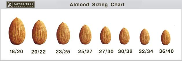 almond nuts manufacturer in johannesburg south africa by