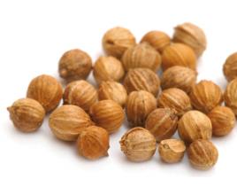 Coriander Seeds (KGCCS-039)