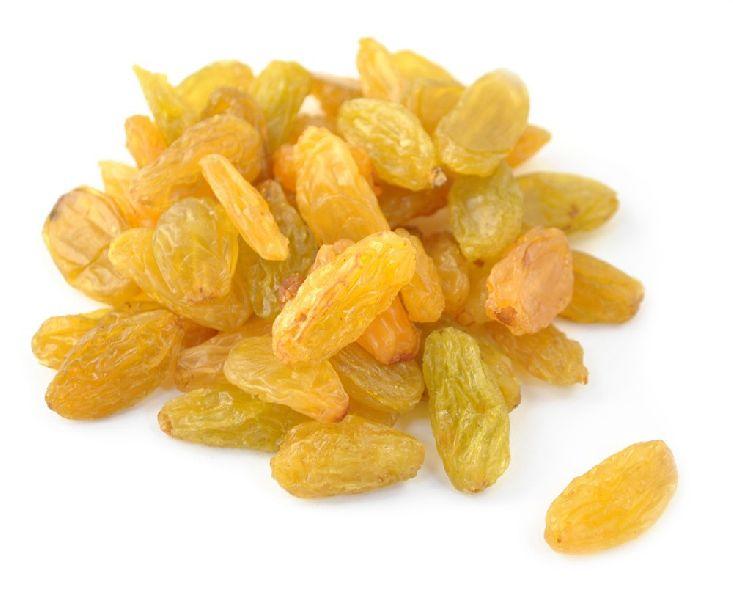 Golden Raisins (KGCCR-002)