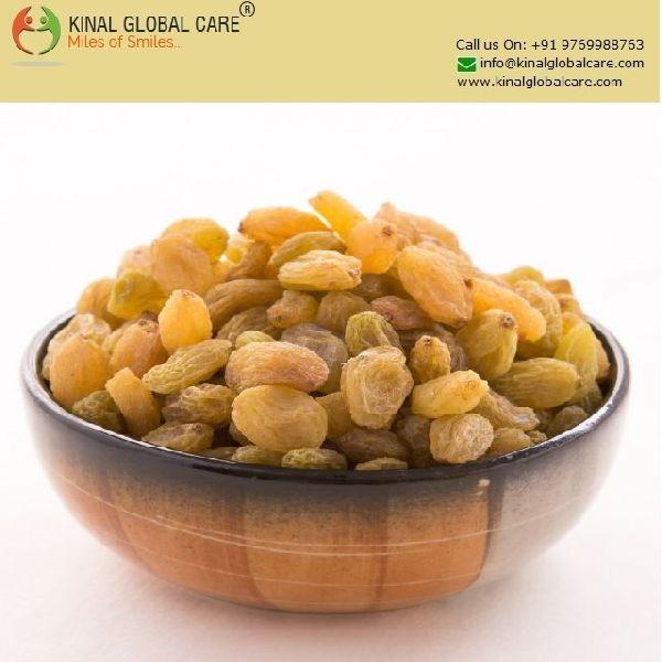 Indian Raisins (KGC-R-1145)