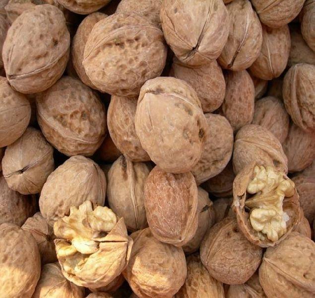 Raw Dried Walnut Kernels