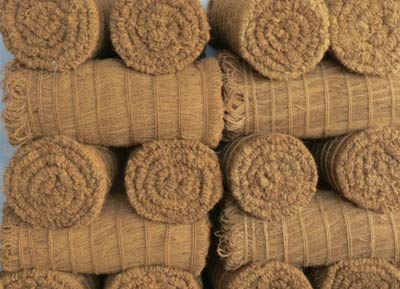 Coconut Cleaning Brooms Manufacturer Offered By First