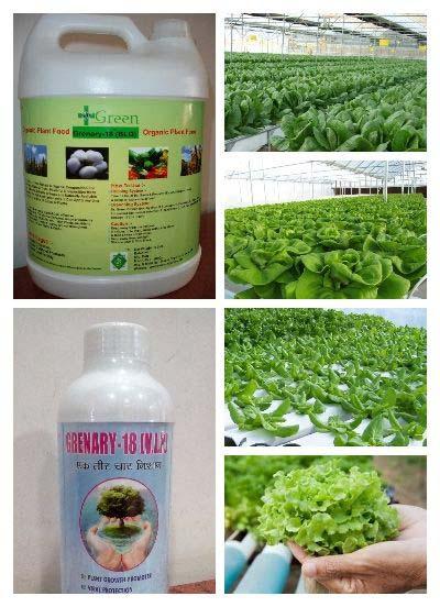 Liquid Bio Fertilizer (Dr.Green ( B.L.Q.))