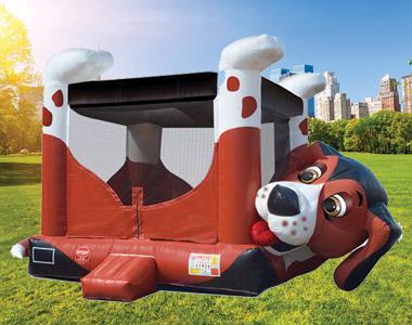 Beagle Bouncer