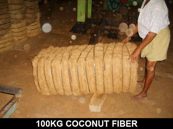 COCUNUT FIBRE INDIA