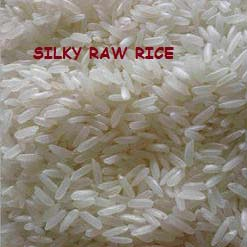 Silky Raw Rice Manufacturer & Manufacturer from, United Arab