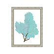 BLUE CORAL FRAMED PRINT #4