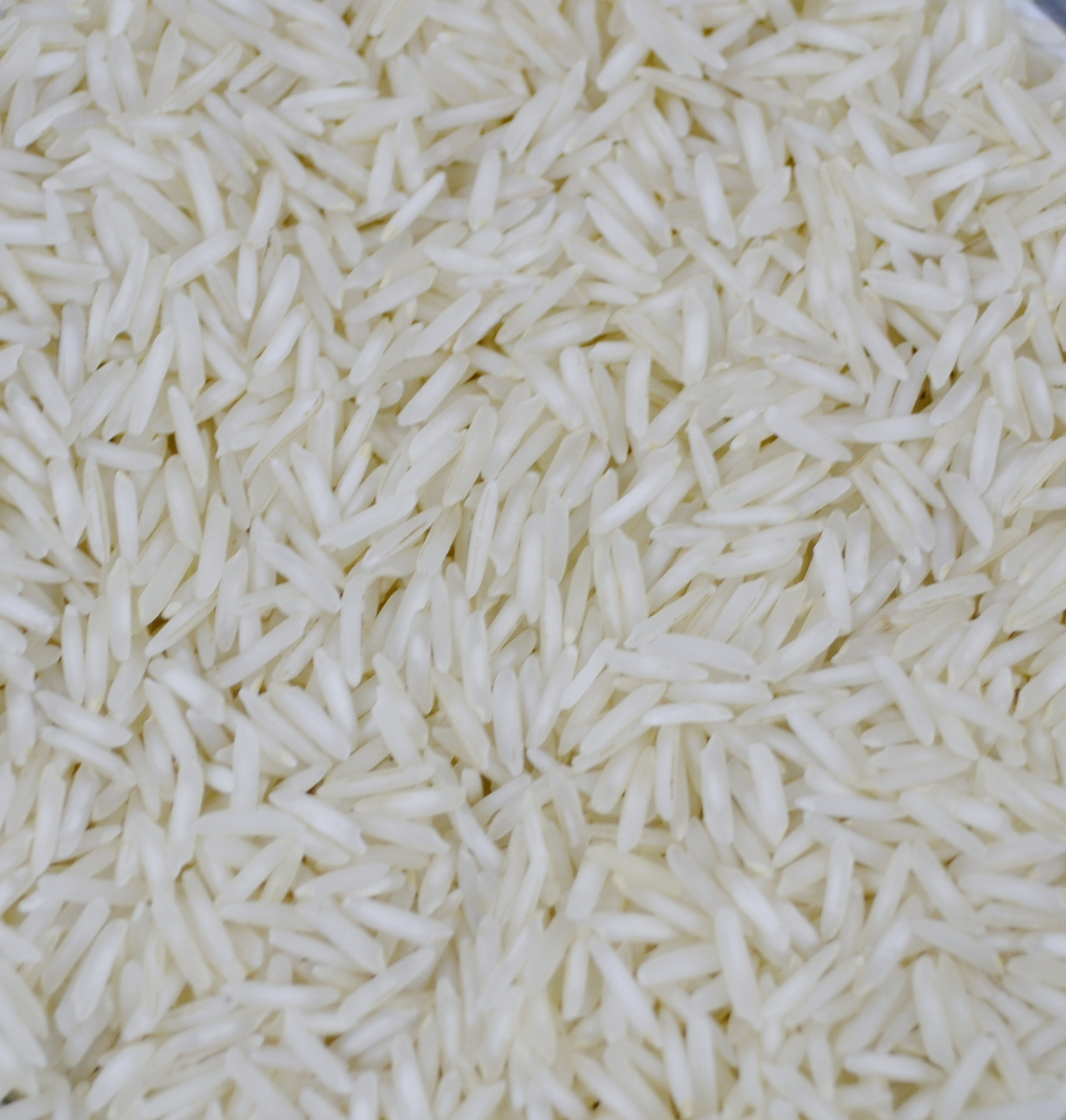 1121 steam basmati