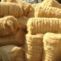 Coir Fibre Manufacturer In Kanchipuram Tamil Nadu India By