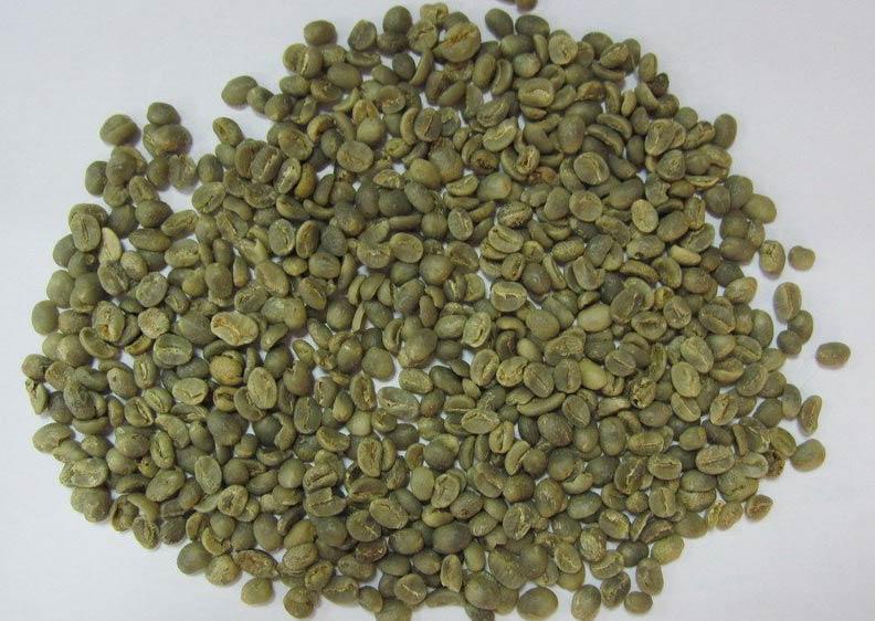 Robusta Ab Coffee Beans (BACO 003)