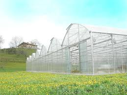 green house products