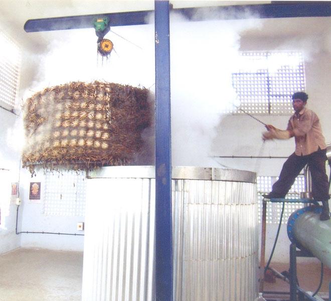 Eucalyptus Oil Distillation Plant (14)