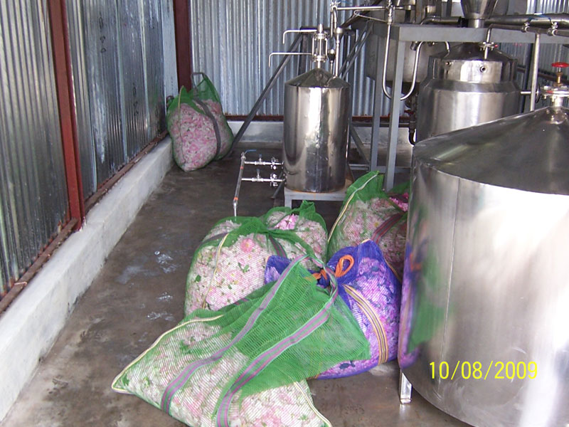 Rose Oil Distillation Plant (16)