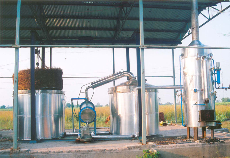Essential Oil Distillation Plant (19)