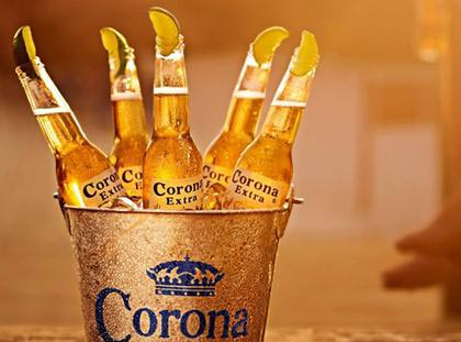 Corona Beer Manufacturer Amp Manufacturer From Singapore
