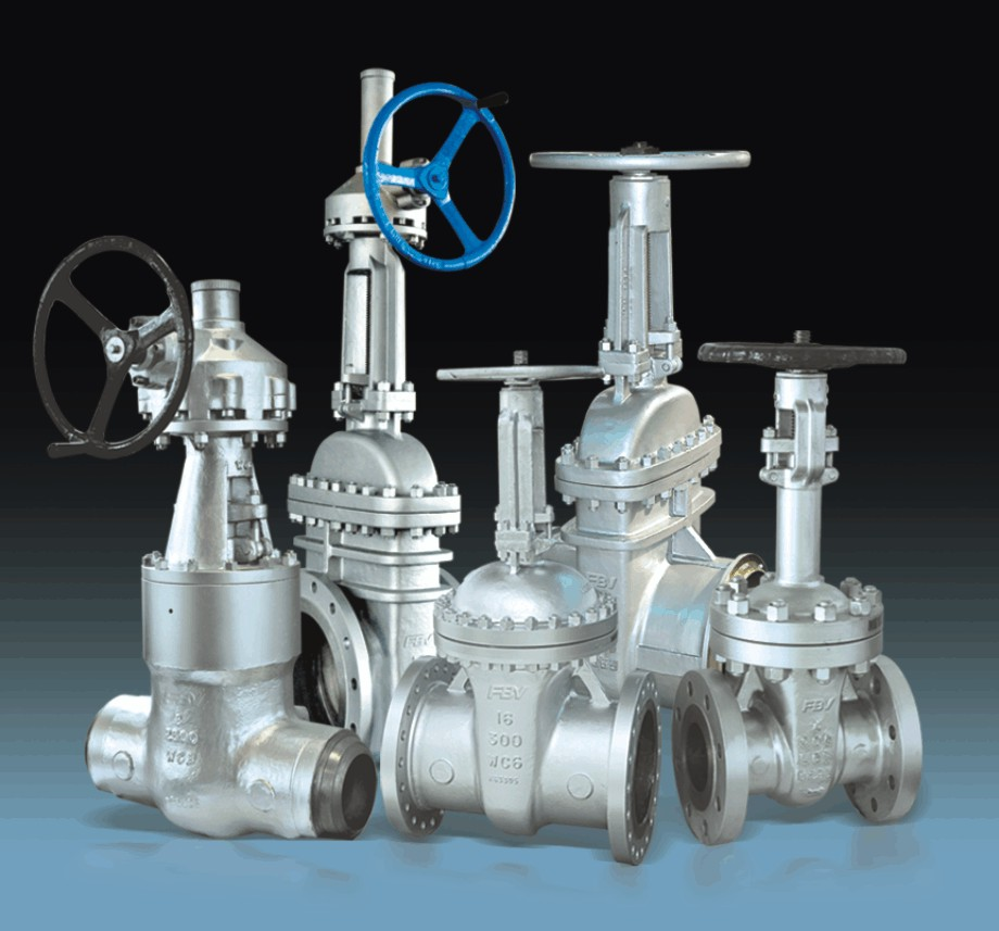 Buy gate valve from fbv inc houston united states id