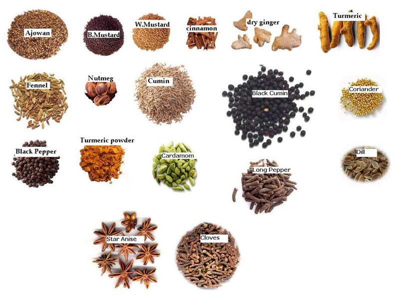 Whole Spices Manufacturer & Exporters from, India | ID - 697946