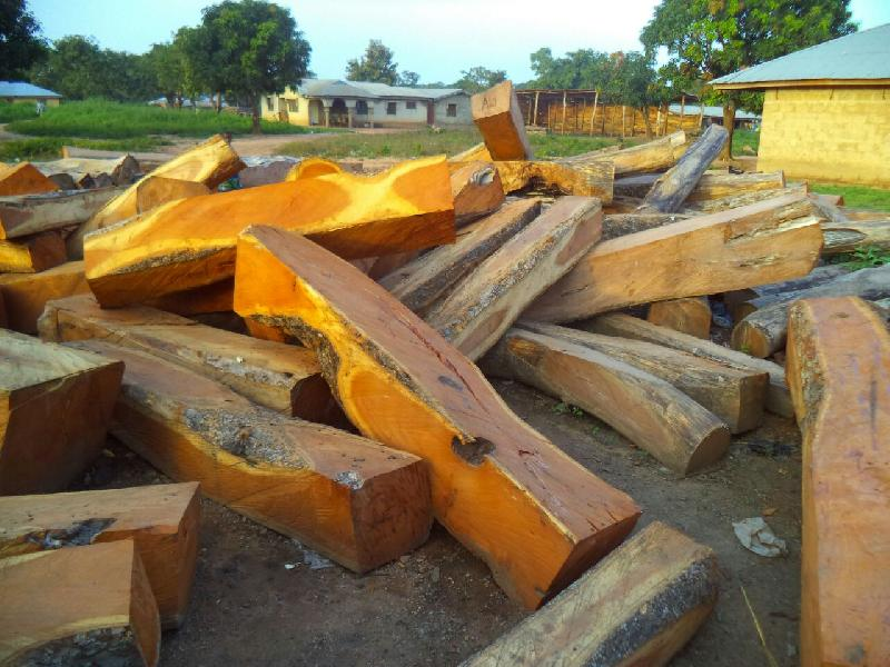 Doussie (Afzelia) Square Logs Manufacturer in Gauteng South Africa by KOFFIEPAULSA TRADINGS PTY LTD