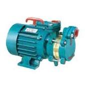 Domestic Monoblock Pumps - 01 (Domestic Monoblock P)