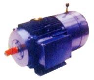 Three Phase AC Motors (Three Phase AC Motor)