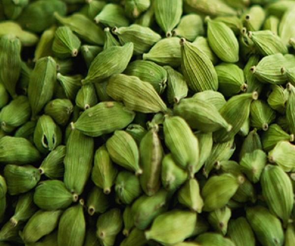 Premium Quality Green Cardamom For Export