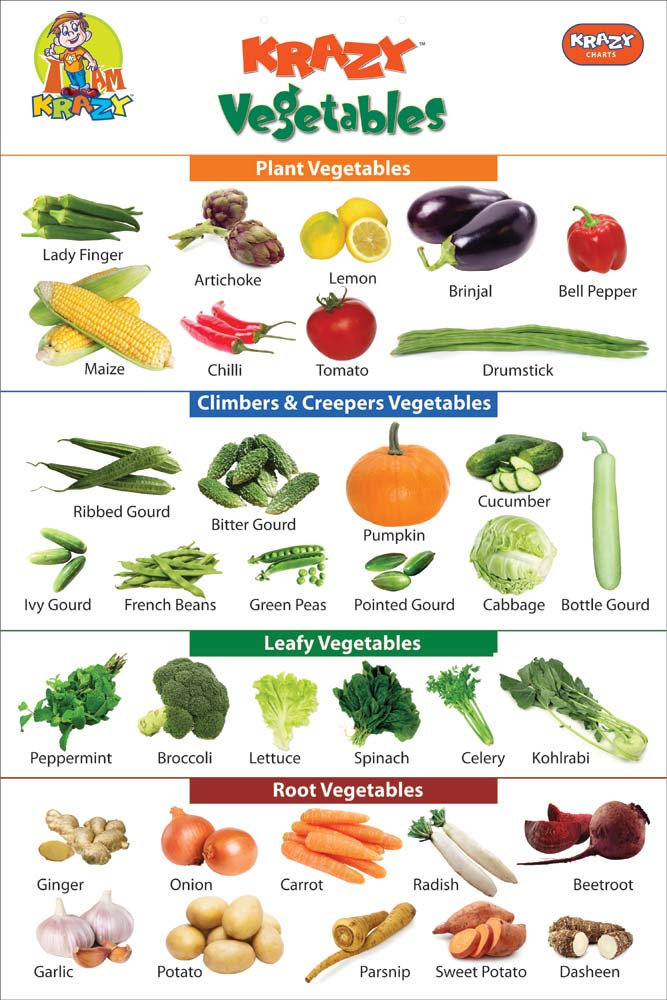 Krazy Vegetables Chart Manufacturer & Manufacturer from