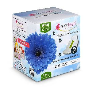 Everteen Natural Cotton Sanitary Napkin For Women - Pack Of 10 Pads