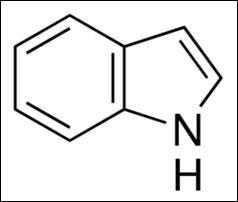 Indole Pharma