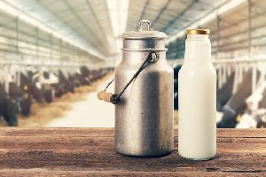 Organic A2 Milk