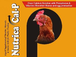 Nutrica Cal-p Supplement