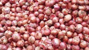 onion brown