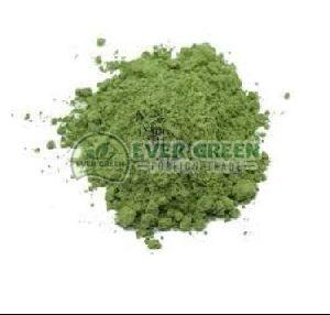 Dry Gymnema Sylvestre Leaf Powder