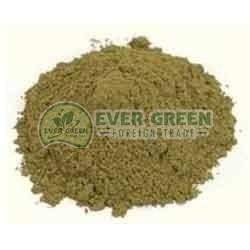 Dry Tulsi Leaf Powder