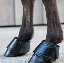 Horse Riding Bell Boot