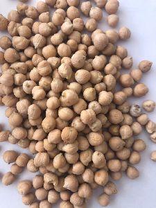 Chick Peas (kabuli Chana)