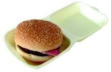 Foam Burger Box With Hinged Lid