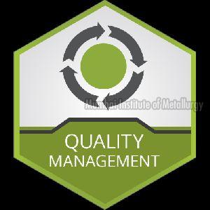 Management System Services