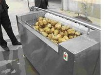 Potato Wafer Plant