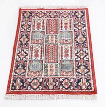 Hand Knotted Persian Veramin
