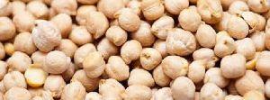 Indian Kabuli Chick Peas