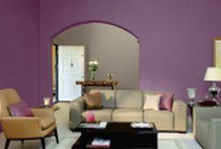 Paint & Polishing Services