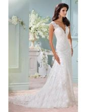 Short Sleeve Lace Overlay Wedding Gown