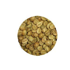 Robusta Green Coffee Bean