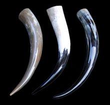 Dinking Horn